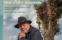 dekapitace stromů isa slovensko.jpg