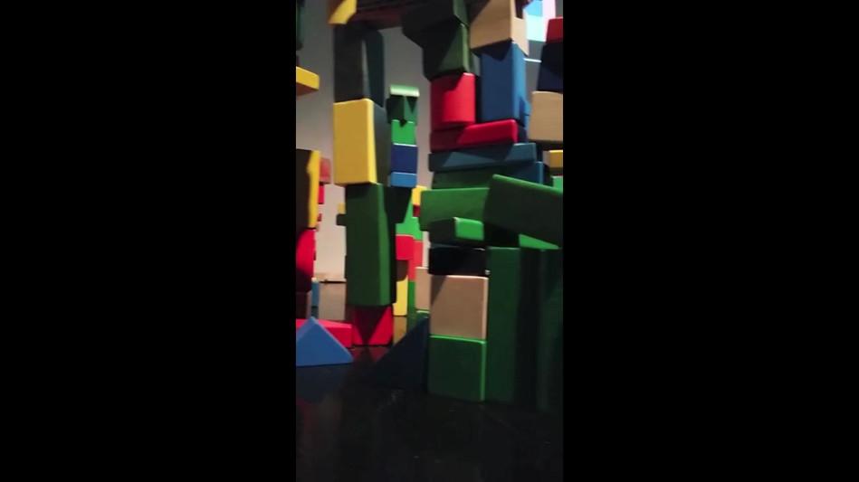 Fauna Blocks.mov