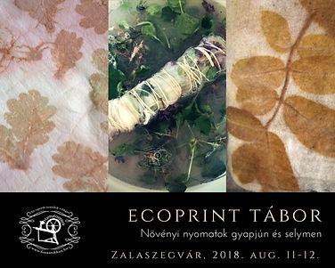 Ecoprint tábor