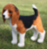 Beagle készlet