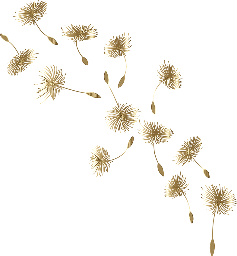 dandelion-5959966_1920.png