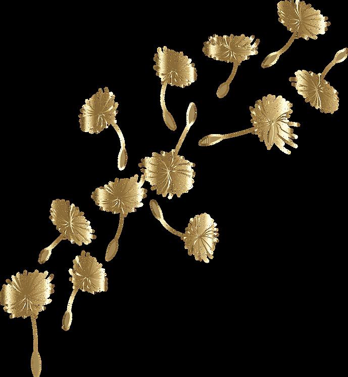 dandelion-5959966_19201.png