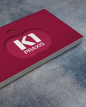 Logo Visitenkarten entwerfen Erstellung Main Kinzig Kreis