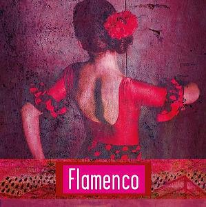 Flamenco_site.jpg