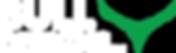 BULL DESIGNS LLC logo.png