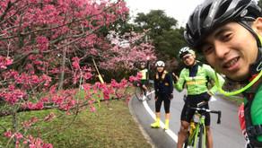2018沖繩單車環島遊圓滿結束!