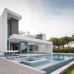 Villa MB Palm Tree House