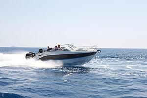 805 Cruiser 4.jpg