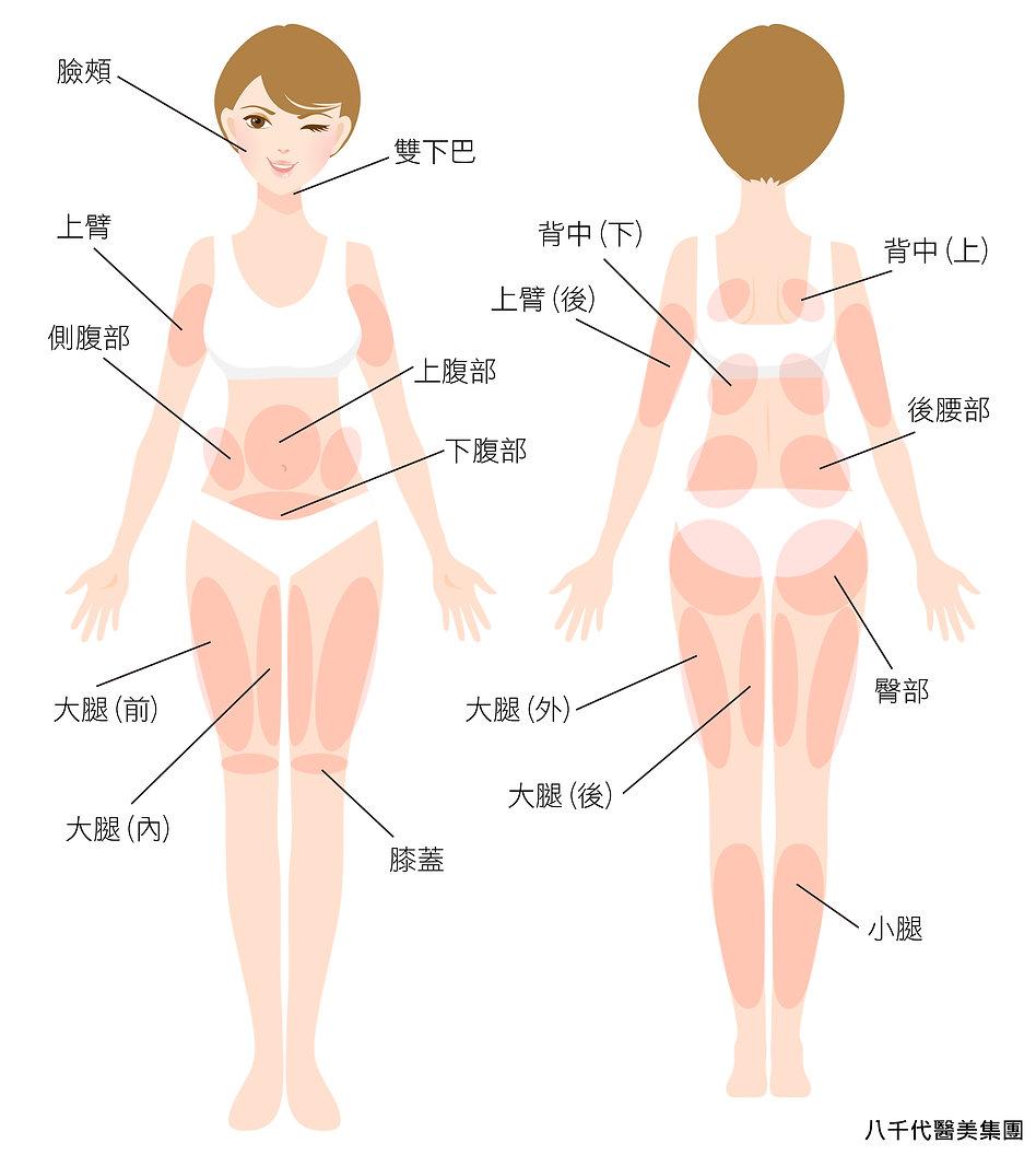 皮下減脂_適應症_身體.jpg