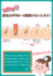 日文官網_服務項目_雙波長亞歷山大除毛雷射_WHY-01.jpg