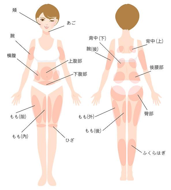 日文官網_服務項目_皮下減脂_身體圖.jpg