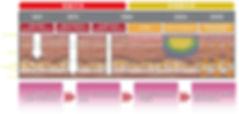 日文官網_服務項目_音波拉提_新一代的拉提技術.jpg