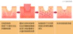 ECO2作用原理圖.jpg