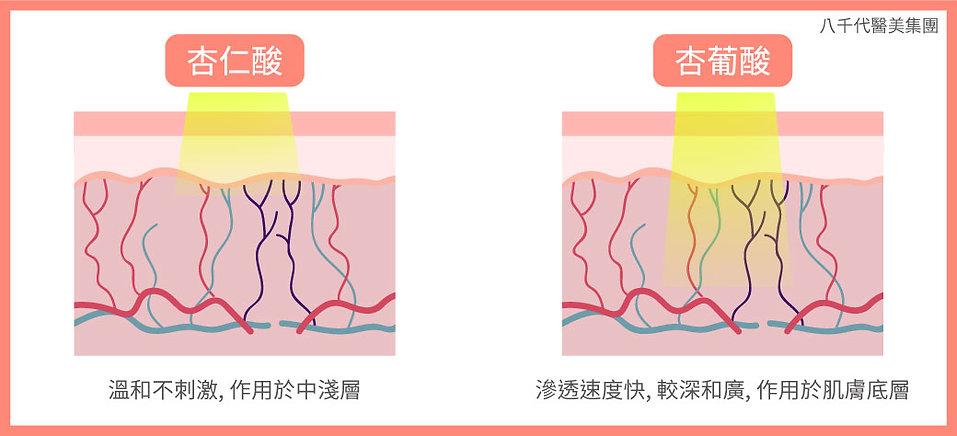 果酸煥膚_杏仁酸和杏葡酸的區別圖.jpg