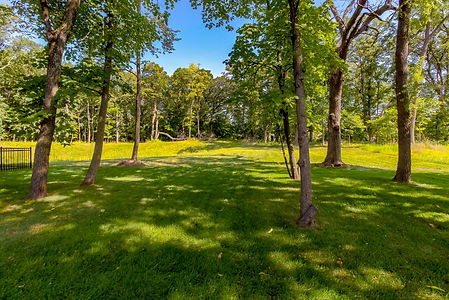 Wooded Walkout Lot in West Des Moines.jp