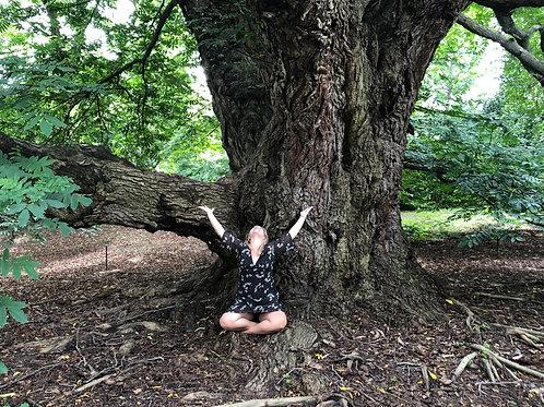 Course: Environmental Mastery For Empaths