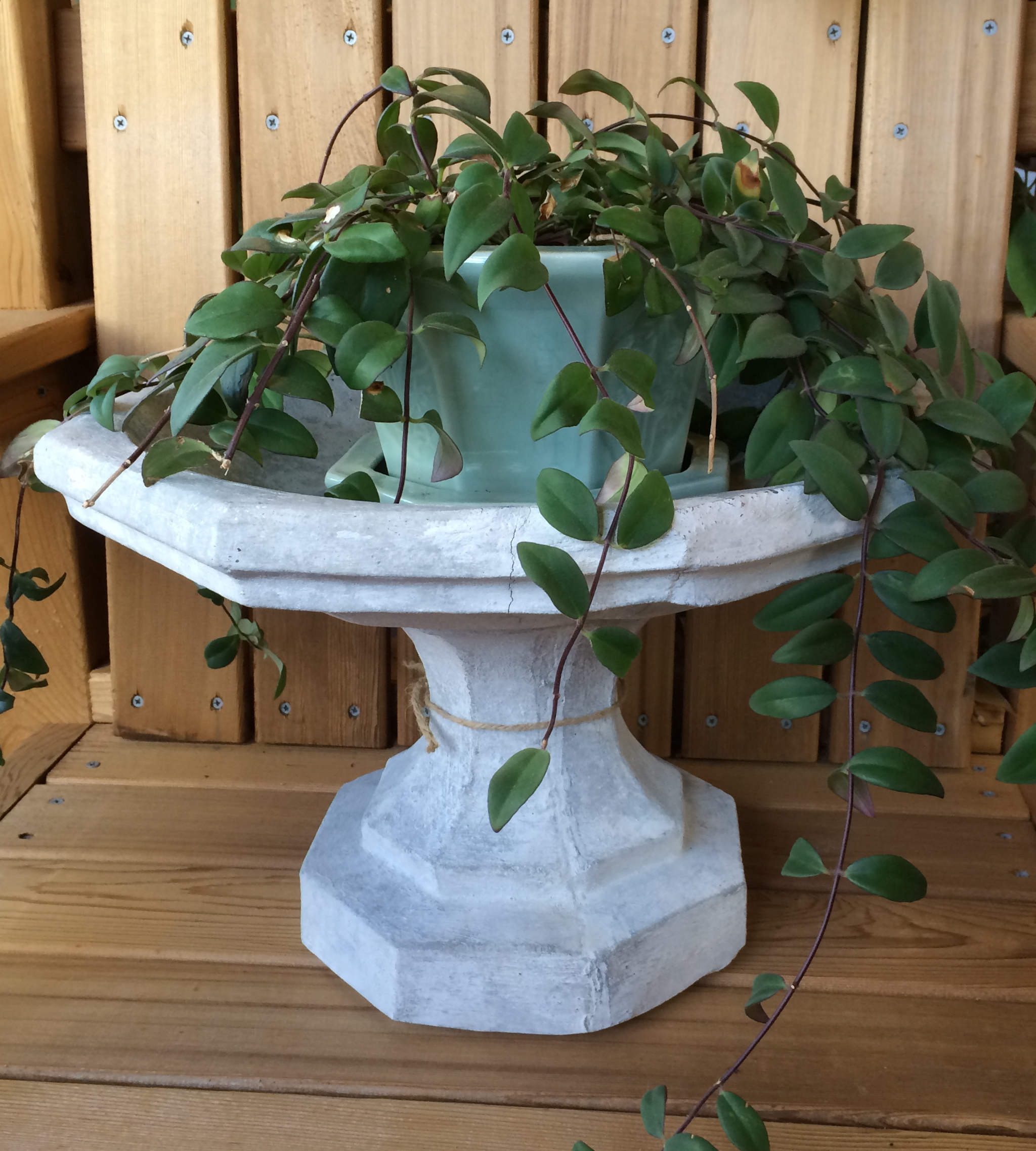 table top birdbath