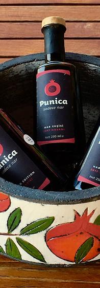 punica_11-1.jpg