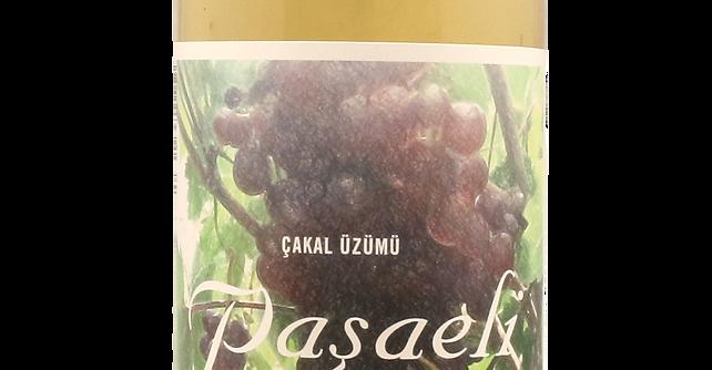 Pasaeli - Cakal 2019