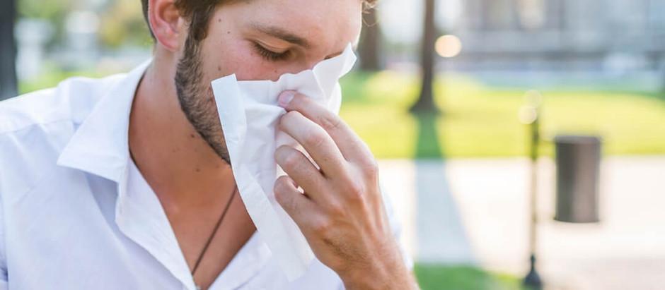 Alergias de Verano 🌞
