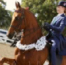 lessons horseback oregon