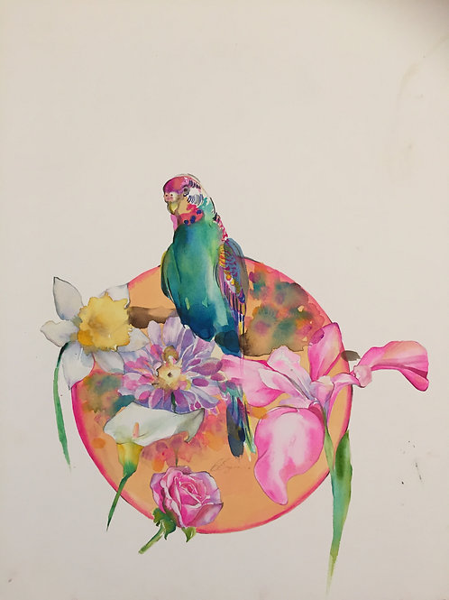Simple parrot bird watercolour and flower sketch. Island holiday fashion lifestyle