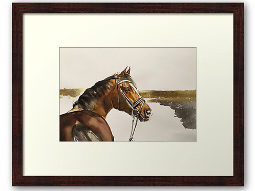 Golden Pastures horse art print of bay dressage horse by Belinda Baynes. Horse lover gift for any equestrian home or barn