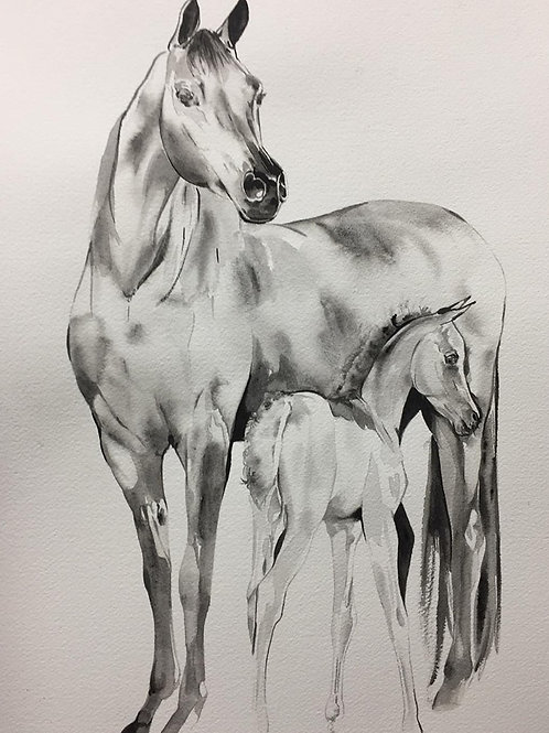 Horse and foal art black watercolour painting at Pony and Belle by Belinda Baynes