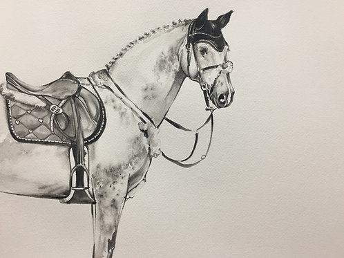 Horse Showjumper equine art at pony and Belle by Sydney artist & designer, Belinda Baynes. Show jumping equestrian lifestyle.