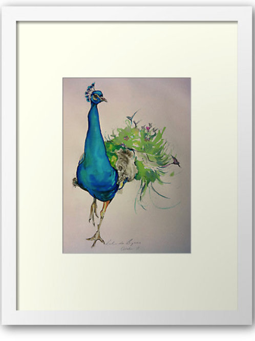 Peacock bird art print by Sydney artist and designer, Belinda Baynes at Pony and Belle. Beautiful peacock art