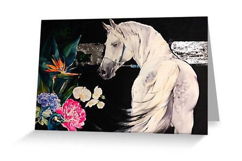 Horse greeting art card sets from Belinda Baynes. Grey white horse with flowers, peacock and orchids at Pony and Belle