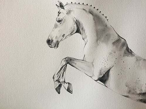 Black fashion watercolour horse art show jumper horse free jumping or dressage art at Pony and Belle