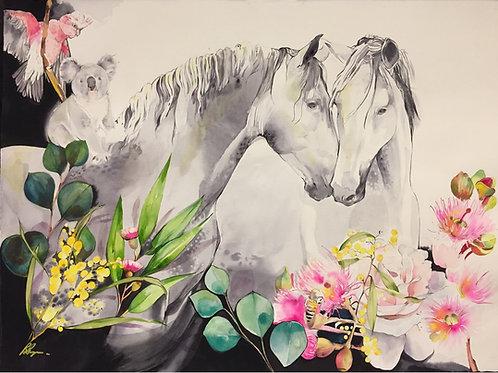 Kenthurst; Home is Where the Heart is by Belinda Baynes. Horse art of two grey horses nuzzling, Australian background & koala
