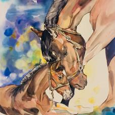 'My Mum' horse & foal art by Belinda Baynes