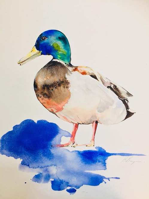 Ducky watercolour print by Sydney artist and designer, Belinda Baynes