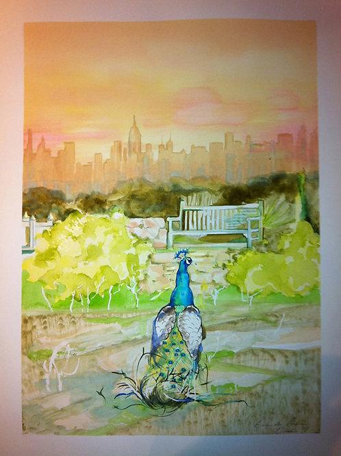 'My City'