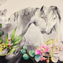 Horse Love watercolour with Koala by Belinda Baynes