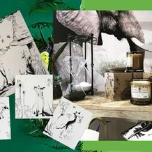 Custom packaging illustration for Ekcletika Home