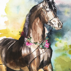 Arabian Watercolour by Sydney artist and designer, Belinda Baynes