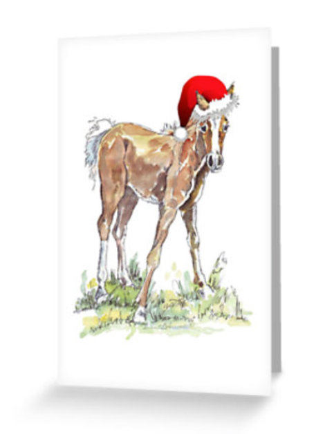 Pack of 6 Foal Christmas Card
