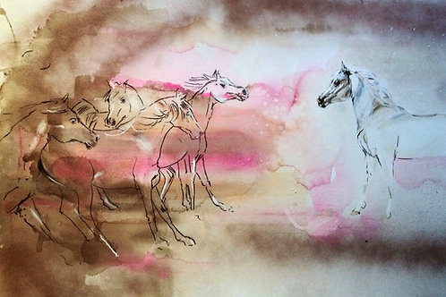 Equestrian art with white watercolour horse with dusty herd of horses by Belinda Baynes. Horse lover gift idea