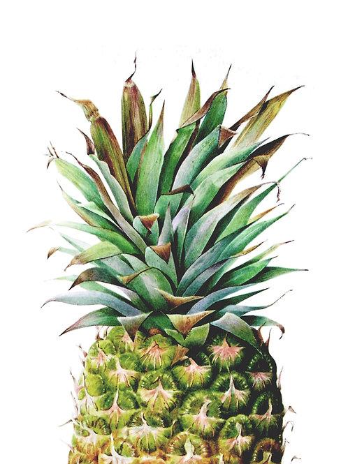 Watercolour Pineapple Print A3