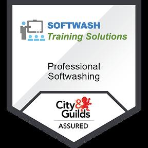 softwashing badge