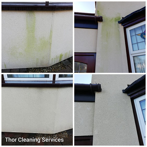 Render softwash green stain clean wall cleaning