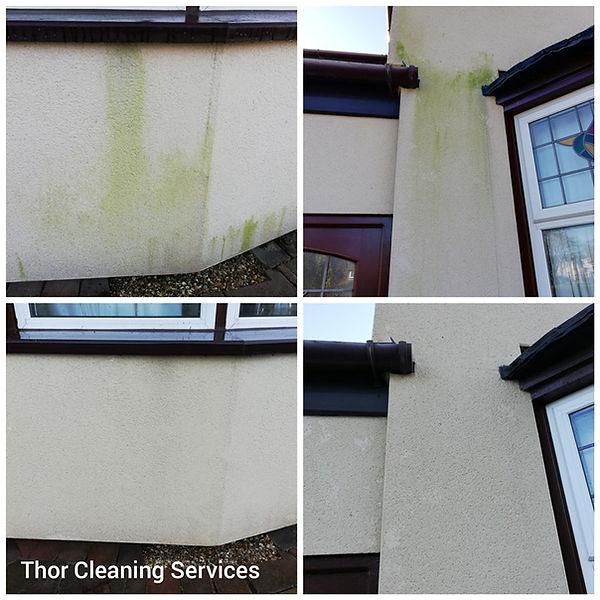Render softwash green stain