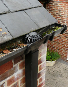 guttering downspout cage