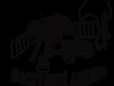 Backyard Camping T-shirts