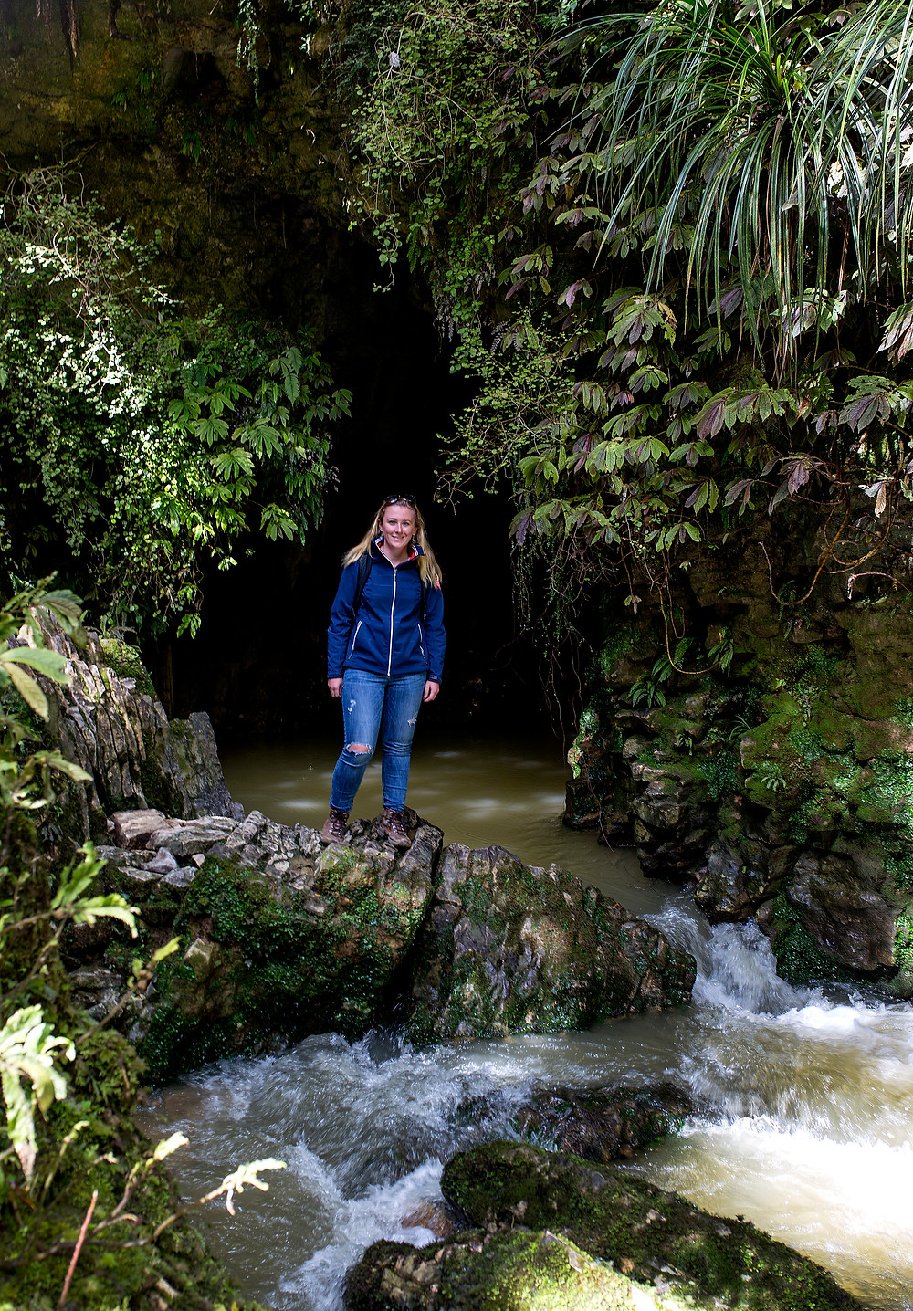 Free Waitomo forest walk in New Zealand