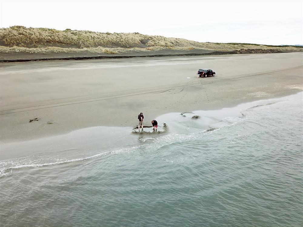 Kawhia Hot Water Beach during winter.  Vehicle on the sand at Kawhia