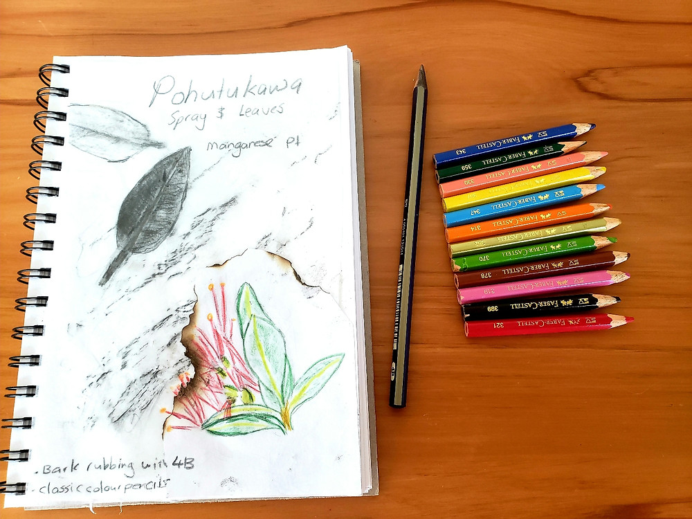 Travel journal with nature sketch and bark rubbing collaged.  Pohutukawa bloom and bark.